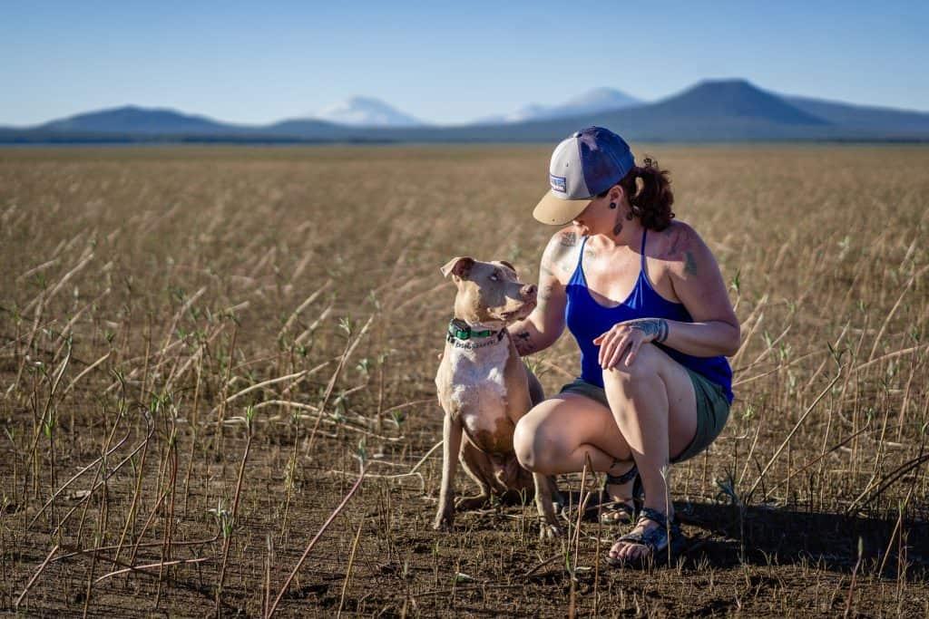 Relationship-based-dog-training